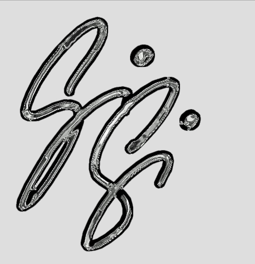 Gisela Gibbon Signature Logo
