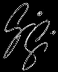 Gisela Gibbon Logo ©